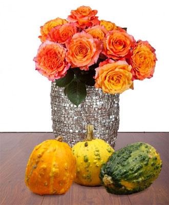Update! Herbstpaket für 14,90€ bei Miflora   10 orange Rosen + 3 Zierkürbisse