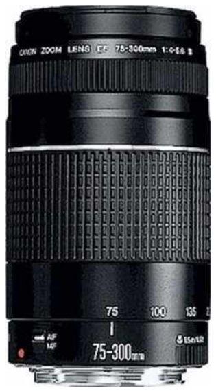 Canon EOS 1100D Kit 18 55mm + 75 300mm für 379€