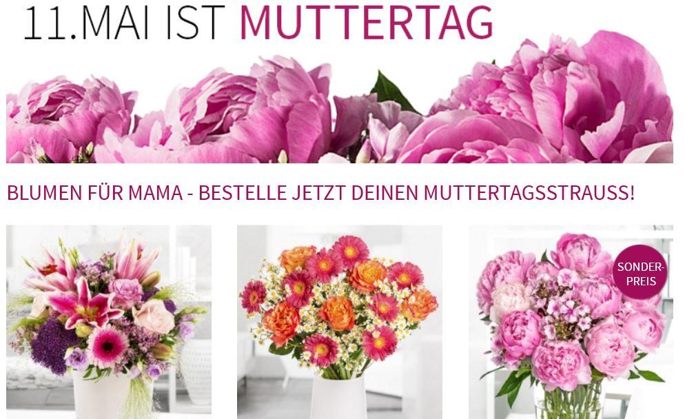 Blumenstrauß   Sophia nur 19,90€ und mehr Muttertags  Blumen